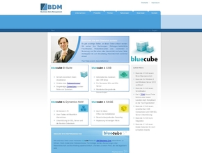 BDM Business Data