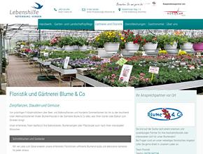 Blume & Co - Gärtnerei und Floristik bei Verden